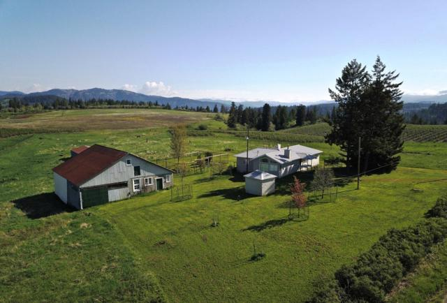 7375 E Sunrise Dr, Harrison, ID 83833 (#19-5218) :: HergGroup Coeur D'Alene