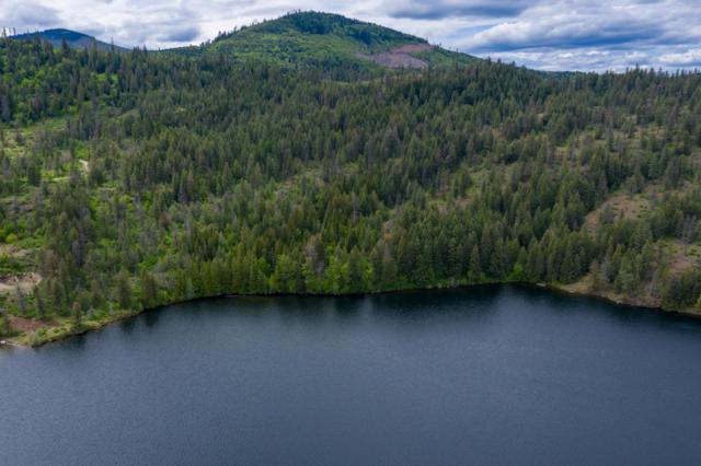 21001 W Lower Twin Lake Shore, Rathdrum, ID 83858 (#19-5301) :: Mandy Kapton | Windermere