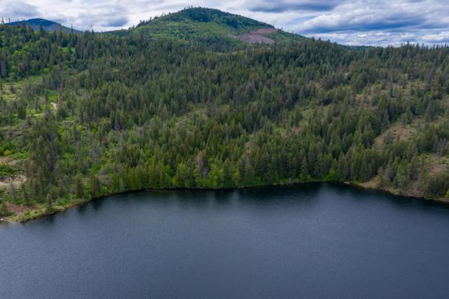 21003 W Lower Twin Lake Shore, Rathdrum, ID 83858 (#19-5306) :: Mandy Kapton | Windermere