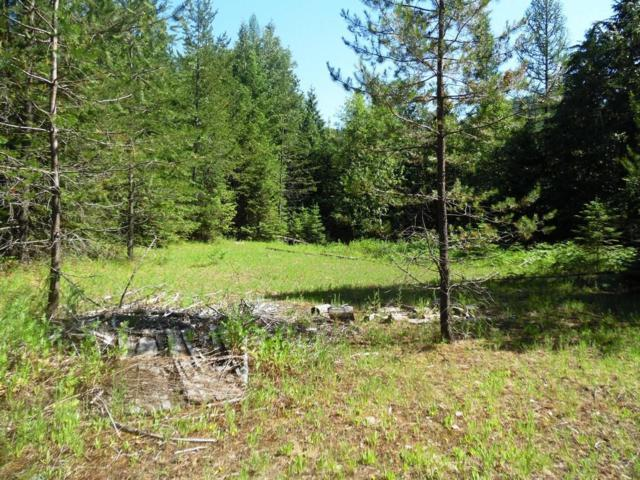 NNA Trout Creek Rd, Sandpoint, ID 83864 (#19-5326) :: Link Properties Group