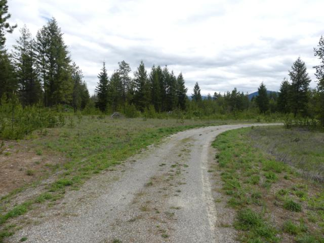Lot 3 Old Hwy 95, Athol, ID 83801 (#19-5347) :: Link Properties Group