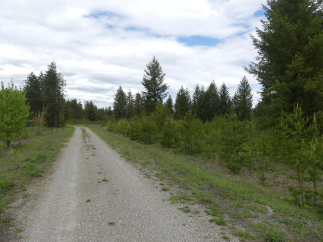 Lot 4 Old Hwy 95, Athol, ID 83801 (#19-5348) :: Link Properties Group