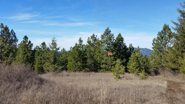 NKA E Rosewood Road, St. Maries, ID 83861 (#19-5464) :: Link Properties Group