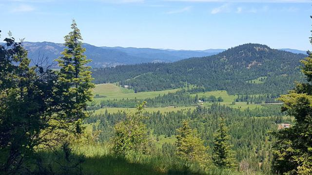NKA E Rosewood Rd, St. Maries, ID 83861 (#19-5467) :: Link Properties Group