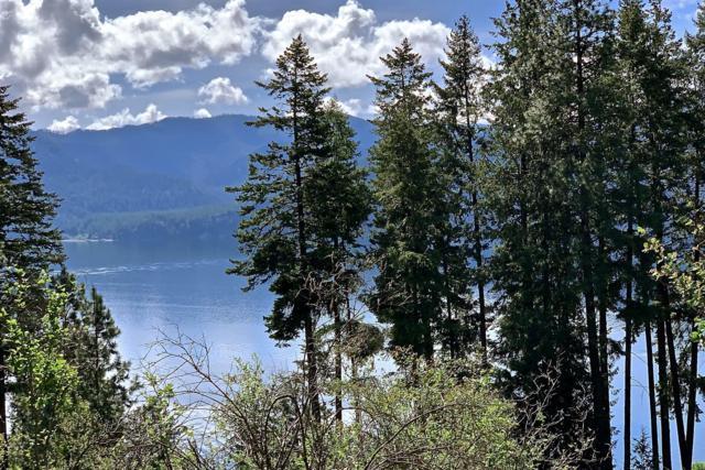 NNA Glacier Loop, Bayview, ID 83803 (#19-5480) :: Link Properties Group