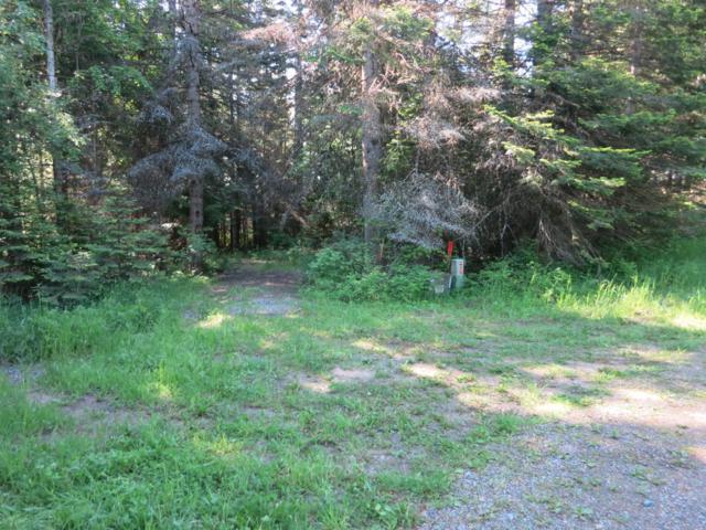 Nka Cedar Grove, Harrison, ID 83833 (#19-5514) :: Mandy Kapton | Windermere