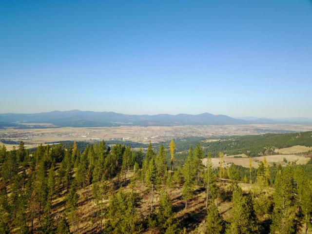 NNA Big Rock Rd, Post Falls, ID 83854 (#19-561) :: Windermere Coeur d'Alene Realty