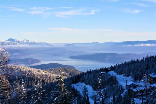 Lot 5 Mogul Hill, Sandpoint, ID 83864 (#19-5674) :: Link Properties Group