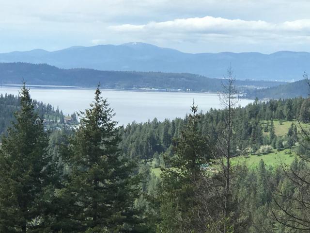 7399 S Caribou Ridge Rd, Harrison, ID 83833 (#19-5761) :: Windermere Coeur d'Alene Realty