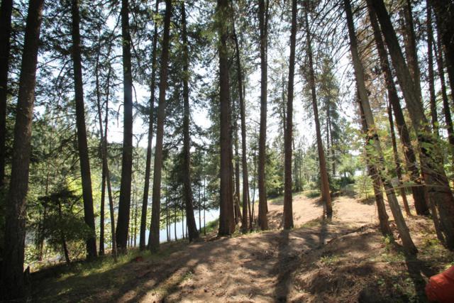 L2 N Waters Edge Ct, Hayden, ID 83835 (#19-5922) :: Northwest Professional Real Estate
