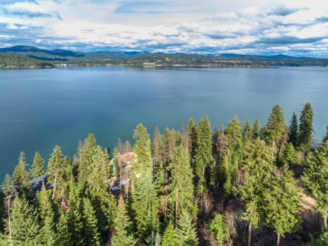 3676 S North Cape Road, Coeur d'Alene, ID 83814 (#19-5937) :: Northwest Professional Real Estate