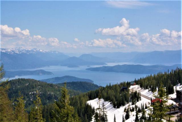 Lot 3 Tall Timber, Sandpoint, ID 83864 (#19-6069) :: Link Properties Group