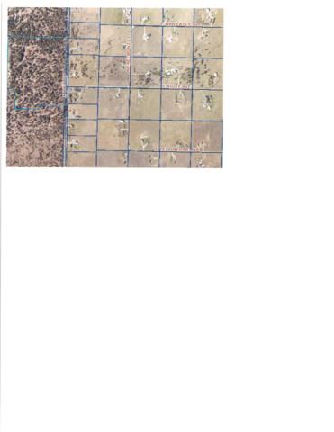 NKA Weir Road, Athol, ID 83801 (#19-610) :: Windermere Coeur d'Alene Realty