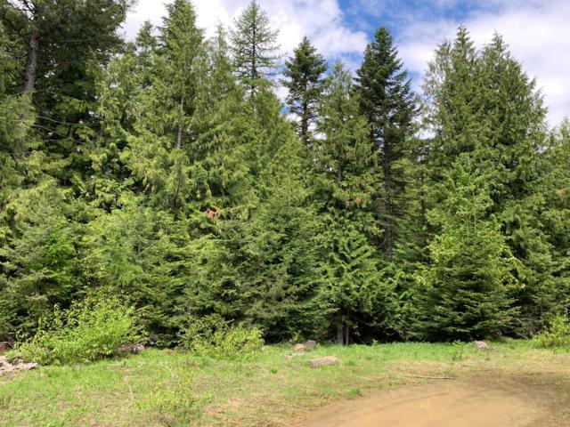 2640 Crystal Peak Rd, Fernwood, ID 83830 (#19-6261) :: Flerchinger Realty Group - Keller Williams Realty Coeur d'Alene