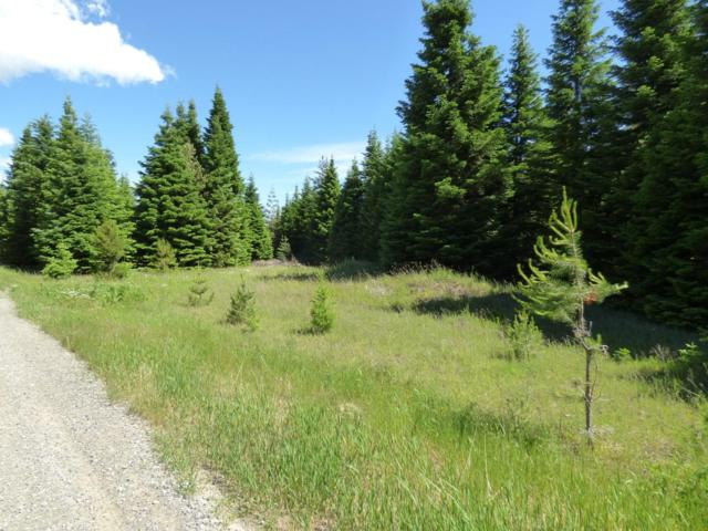 Lot 7 Ocean Front Pl, Naples, ID 83847 (#19-6292) :: Team Brown Realty