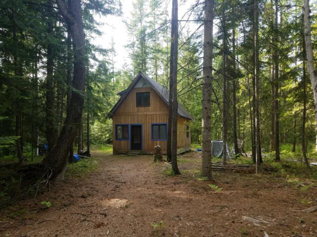 NNA Knapweed Lane, Clark Fork, ID 83811 (#19-6585) :: Mandy Kapton   Windermere
