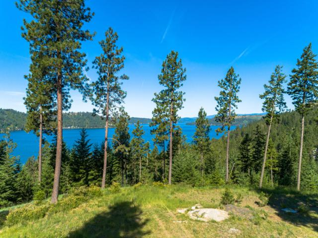 Lt 19 Blk3 Ledgestone Rd, Harrison, ID 83833 (#19-6805) :: ExSell Realty Group
