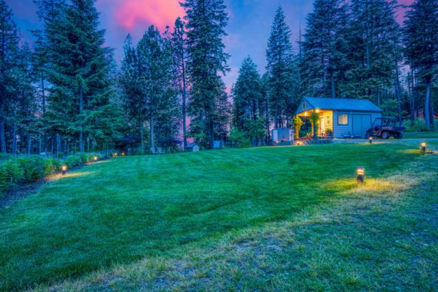 461 Glacier Loop, Bayview, ID 83803 (#19-6810) :: ExSell Realty Group