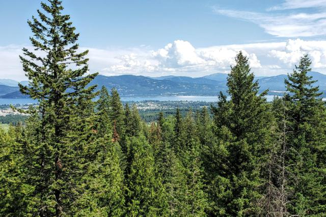 239 Inspiration Way, Sandpoint, ID 83864 (#19-6812) :: ExSell Realty Group