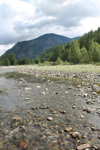 NKA Spring Lane  Ne 5 Acres, Clark Fork, ID 83811 (#19-6818) :: Northwest Professional Real Estate