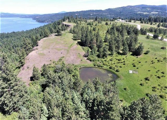0 Hawk Rd, Harrison, ID 83833 (#19-6826) :: Chad Salsbury Group