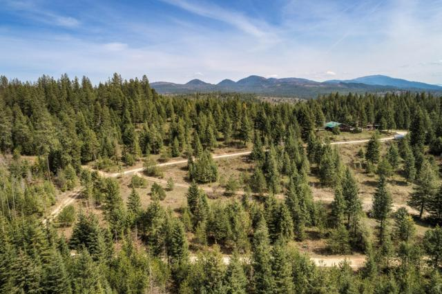373 Lazy Spade Ln, Careywood, ID 83809 (#19-6916) :: ExSell Realty Group