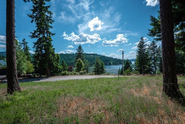 NKA E Sunset Shores Ct, Harrison, ID 83833 (#19-7393) :: Windermere Coeur d'Alene Realty
