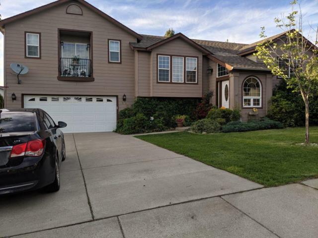 508 W Colt Ln, Post Falls, ID 83854 (#19-7415) :: Northwest Professional Real Estate