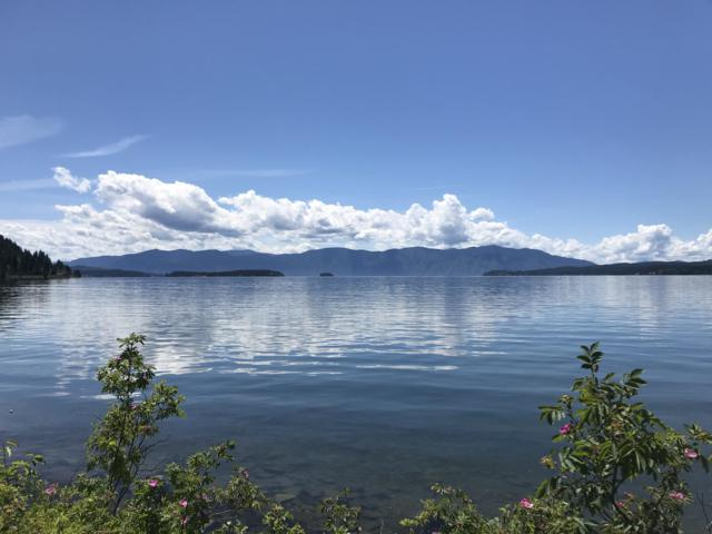 NNA  #5 Country Road, Sandpoint, ID 83864 (#19-7525) :: The Jason Walker Team