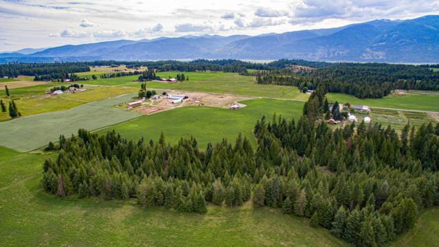 2195 Moon Shadow Rd, Bonners Ferry, ID 83805 (#19-7722) :: Prime Real Estate Group