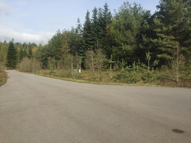 Lot 6 Missing Pony Ct, Sandpoint, ID 83864 (#19-7745) :: Link Properties Group