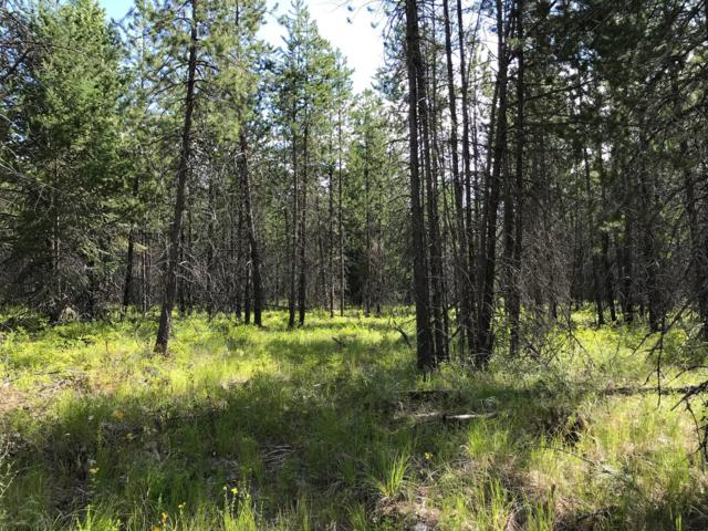 Blk2 Lot3A Barn Owl Dr., Spirit Lake, ID 83869 (#19-8062) :: Northwest Professional Real Estate