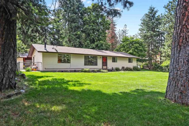 14155 W Riverview Dr, Post Falls, ID 83854 (#19-8067) :: ExSell Realty Group