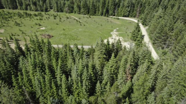 50 Granite Ridge, Priest River, ID 83856 (#19-8075) :: ExSell Realty Group