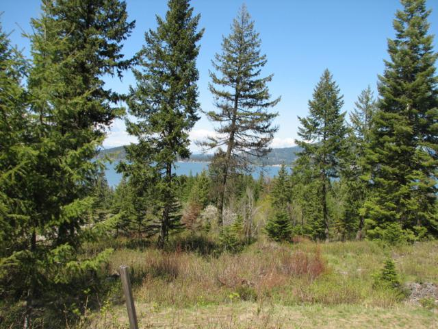 Lot 22 Harrow Road, Harrison, ID 83833 (#19-8109) :: Prime Real Estate Group