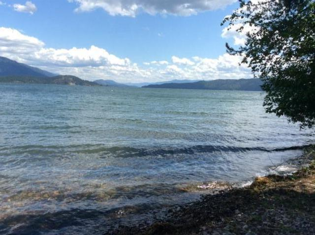 411 W Oden Bay Rd, Sandpoint, ID 83864 (#19-8131) :: Prime Real Estate Group