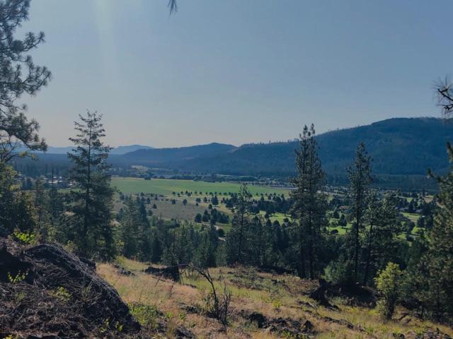 902 Forest Way, Blanchard, ID 83804 (#19-8153) :: The Jason Walker Team