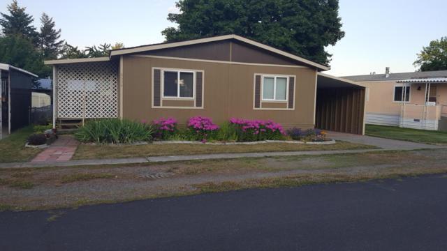 8534 N Sunny Ln, Hayden, ID 83835 (#19-8165) :: Northwest Professional Real Estate