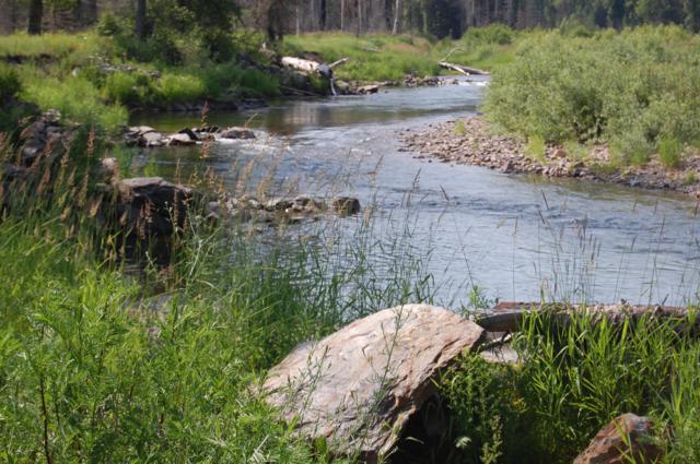 NNA Cda River Rd, Wallace, ID 83873 (#19-8239) :: Keller Williams Realty Coeur d' Alene