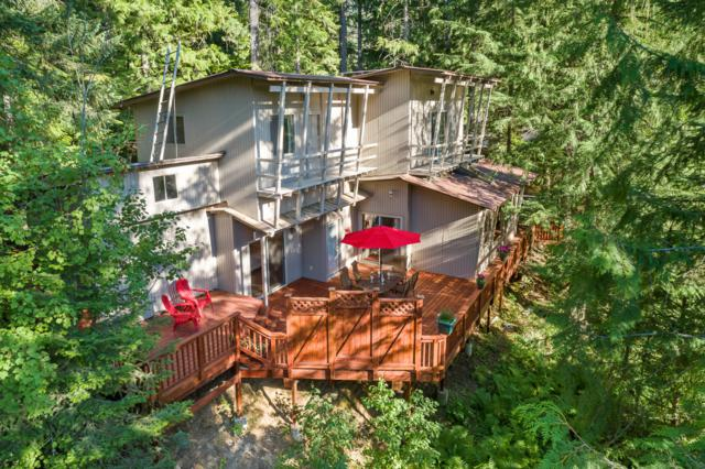 62 Hummingbird Lane, Priest Lake, ID 83856 (#19-8321) :: Team Brown Realty