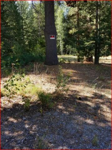 Blazing Saddle, Pinehurst, ID 83850 (#19-8519) :: Team Brown Realty