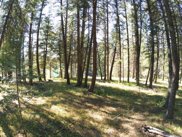 Blk 1 Lot6 Hanaford Dr, Blanchard, ID 83804 (#19-8554) :: Kerry Green Real Estate
