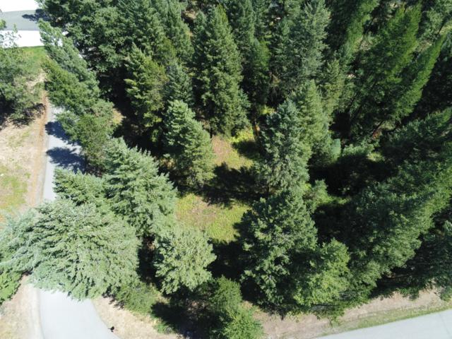 Blk* Lot12 Parkland Dr, Blanchard, ID 83804 (#19-8559) :: Kerry Green Real Estate