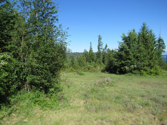 Lot 8 Mariposa Ct, Harrison, ID 83833 (#19-8572) :: Team Brown Realty