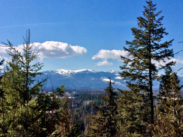 Blk4 Lot16 White Cloud Dr, Sandpoint, ID 83864 (#19-8621) :: Link Properties Group