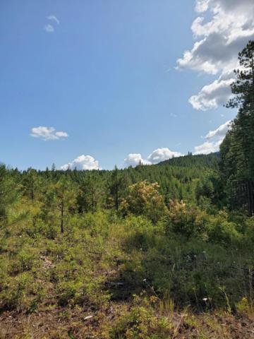 733 Cedar View Estates Rd, Blanchard, ID 83804 (#19-8671) :: Windermere Coeur d'Alene Realty