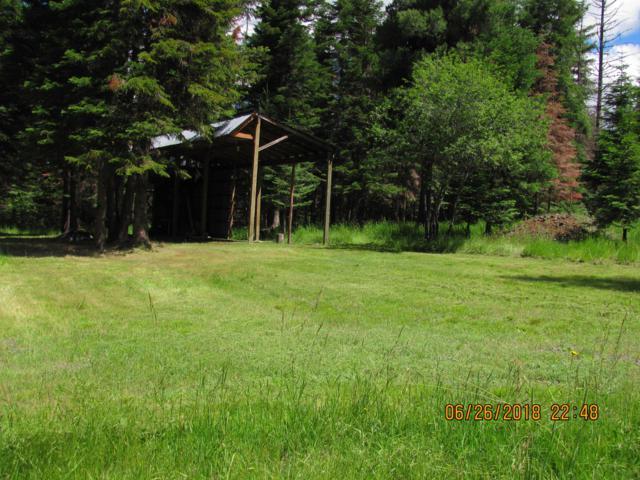 132 Bluff Ln, Santa, ID 83866 (#19-8686) :: Link Properties Group