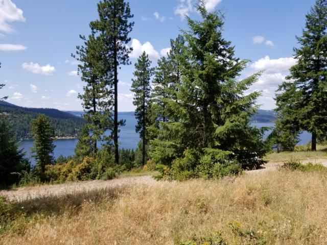 NNA Hanson, Harrison, ID 83833 (#19-8937) :: Coeur d'Alene Area Homes For Sale