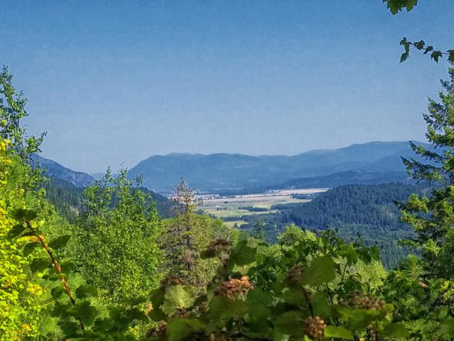 3 Castle And Juniper Rd, Naples, ID 83847 (#19-8944) :: Team Brown Realty
