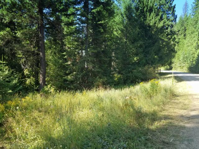 21 Bear Claw Rd, Clark Fork, ID 83811 (#19-8948) :: Team Brown Realty
